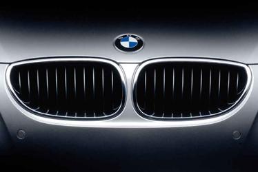 BMW Kidney Grille signature element